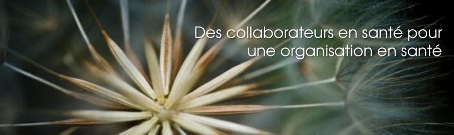 Des collaborateurs en santé pour une organisation en santé